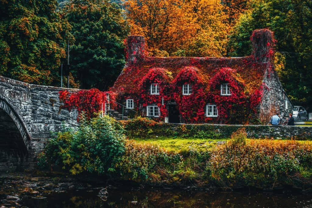 Magical looking cottage